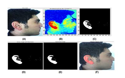 Human recognition based on ear shape images using pca block diagram of the proposed ear recognition system ccuart Choice Image