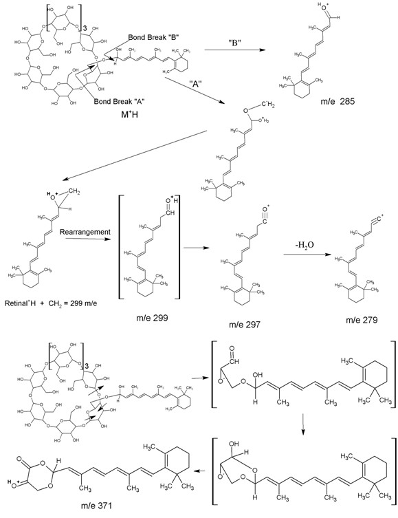 Retinaldehyde Cyclodextrin Complex For Topical Skin Therapy