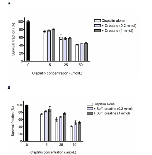 The Effect Of An Alkaline Buffered Creatine Kre Alkalyn On Cell Membrane Behavior Protein Synthesis And Cisplatin Mediated Cellular Toxicity